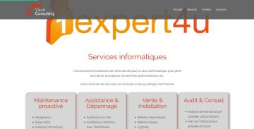 Viaud Consulting - Page 1Expert4U